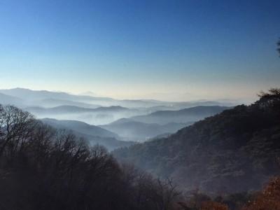 광릉추모공원 겨울 풍경